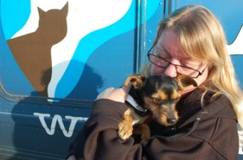 Sue Zucker, rescue group coordinator for Riverside County Animal Services, hugs Noel, a 2-year-old female terrier. Noel was among the California dogs airlifted to new homes in Oregon. (Photo: Riverside County Animal Services)