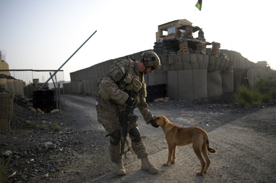 A member of the 1st Platoon Comanche Company of the US Army pets a dog at a checkpoint in the Combat Outpost Lakon in Buwri Tana District, Khost Province on August 9, 2012. (Photo: Jose CABEZAS/AFP/GettyImages)