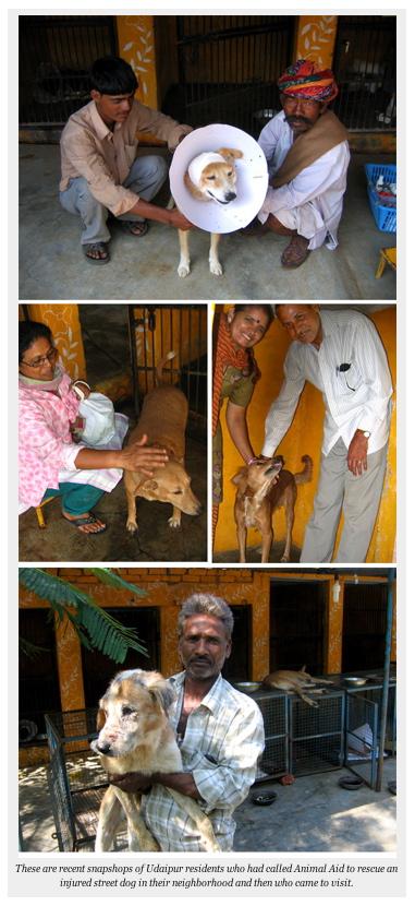 AnimalAidIndia2