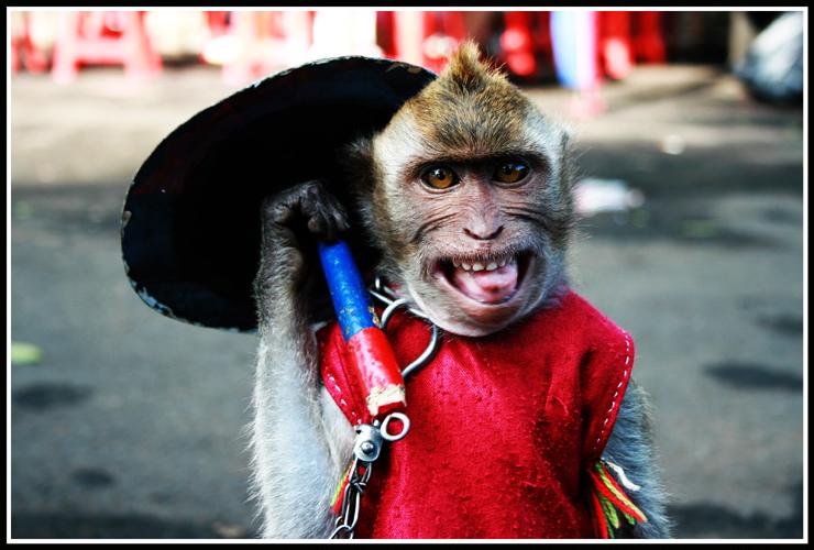 Jakarta street performer. (Photo: Andy Yoes Nugroro)